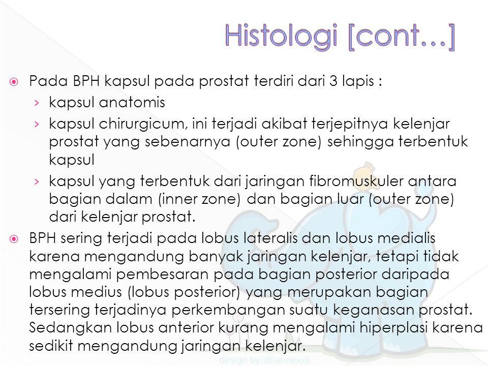 Histologi [cont…] Pada BPH kapsul pada prostat terdiri dari 3 lapis :